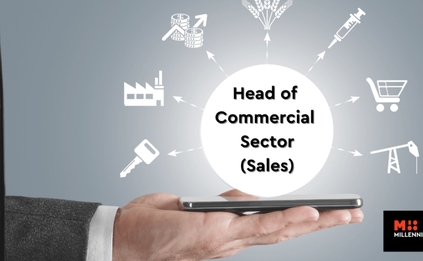 Head of Commercial Sector (Sales)